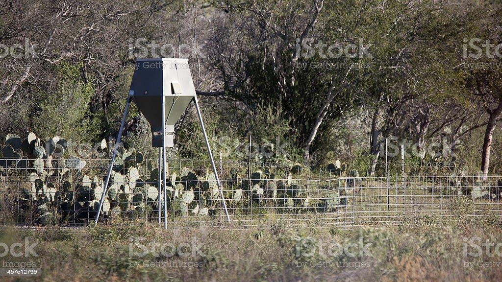 Deer feeder royalty-free stock photo