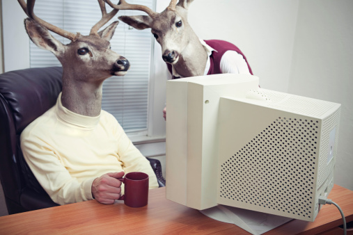 Two business men with the head of a stag / buck work in front of an old computer monitor, drinking coffee and discussing their work.