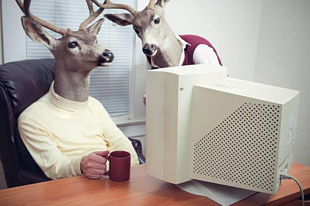 Deer Head Men Working At Office stock photo