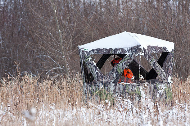 Deer Hunter Wearing Blaze Orange in Hunting Blind Fosston, Minnesota, USA - November 9, 2014:  A deer hunter wearing blaze orange outerwear is sitting in a camouflaged portable hunting blind.  In Minnesota, during open firearm season for hunting deer, the visible portion of at least one item of a cap and outer clothing above the waist, must be blaze orange colored.  This requirement excludes sleeves and gloves.  Blaze orange outerwear which includes a camouflage pattern must be at least fifty percent blaze orange colored within each square foot. hunting blind stock pictures, royalty-free photos & images
