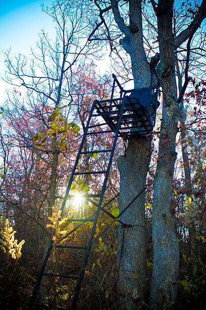 Deer Hunting Stand in Buffalo County, Mondovi, Wisconsin November 6, 2016- Buffalo County, Mondovi, Wisconsin.  USA. Deer stand in trees for hunting.  Buffalo County is known as the best hunting land in Wisconsin. hunting blind stock pictures, royalty-free photos & images