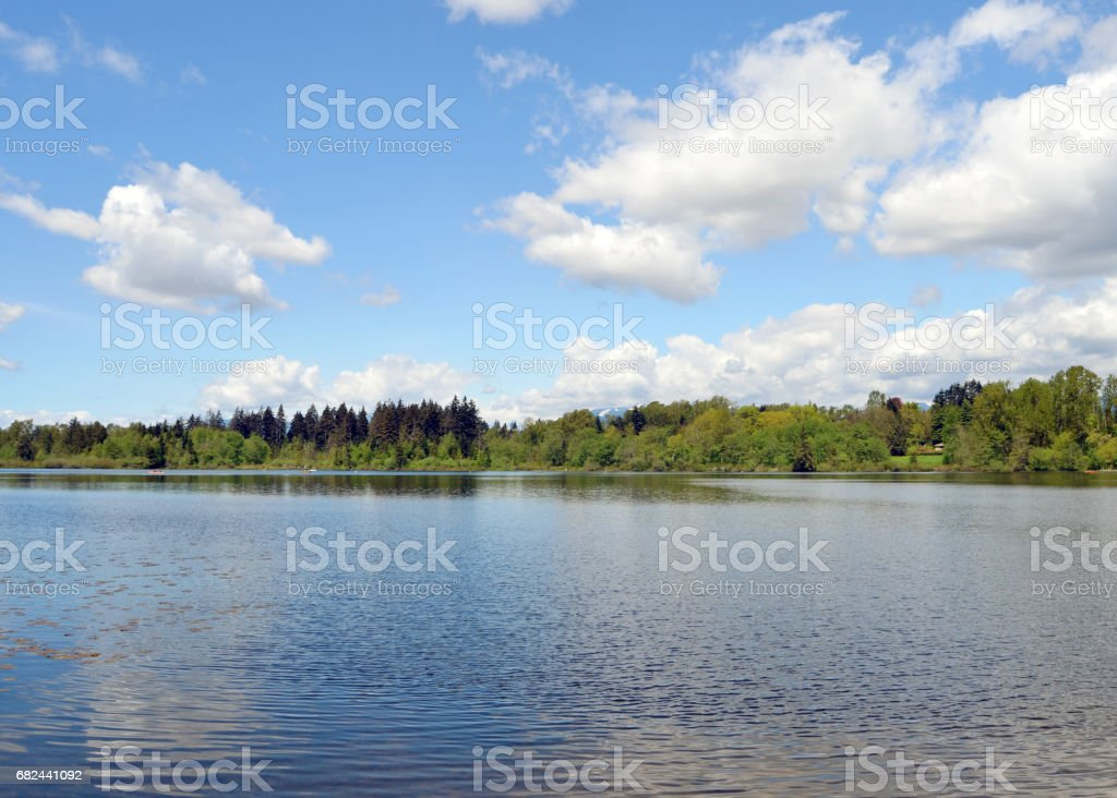Deer Lake in Burnaby royalty-free stock photo