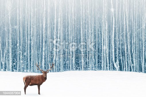 istock Deer male with big horns in the winter snowy forest. Winter natural background. Christmas artistic image. 1044037004