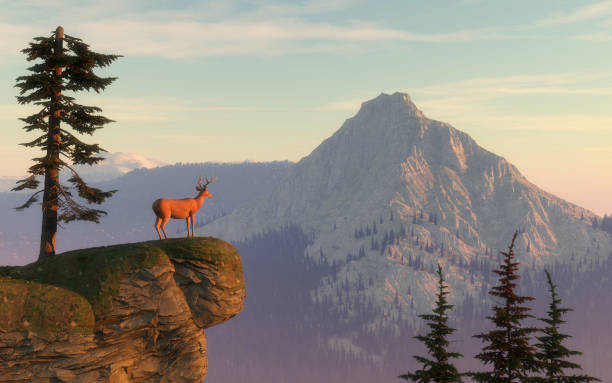Deer on top of a mountain rock . This is a 3d render illustration. stock photo