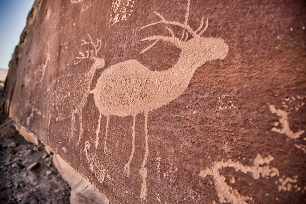 deer petroglyph - hopi stock photos and pictures