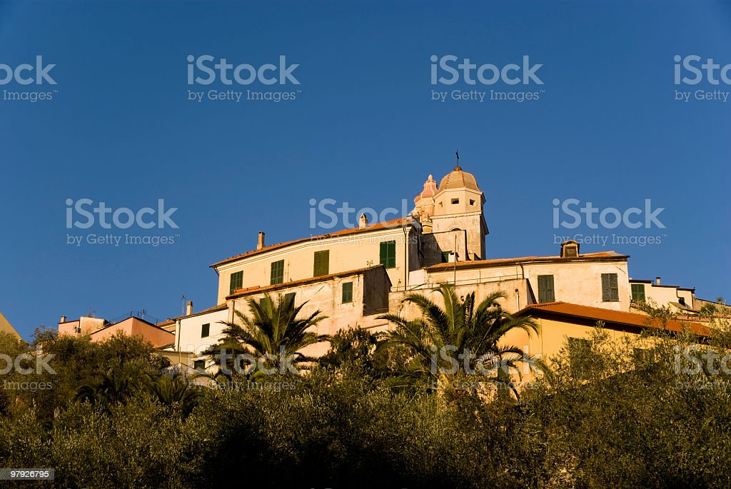 Cervo royalty-free stock photo