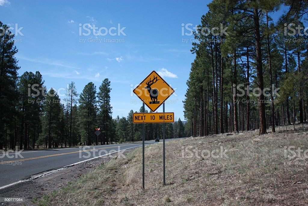 Deer Road Warning Sign in Arizona, USA stock photo