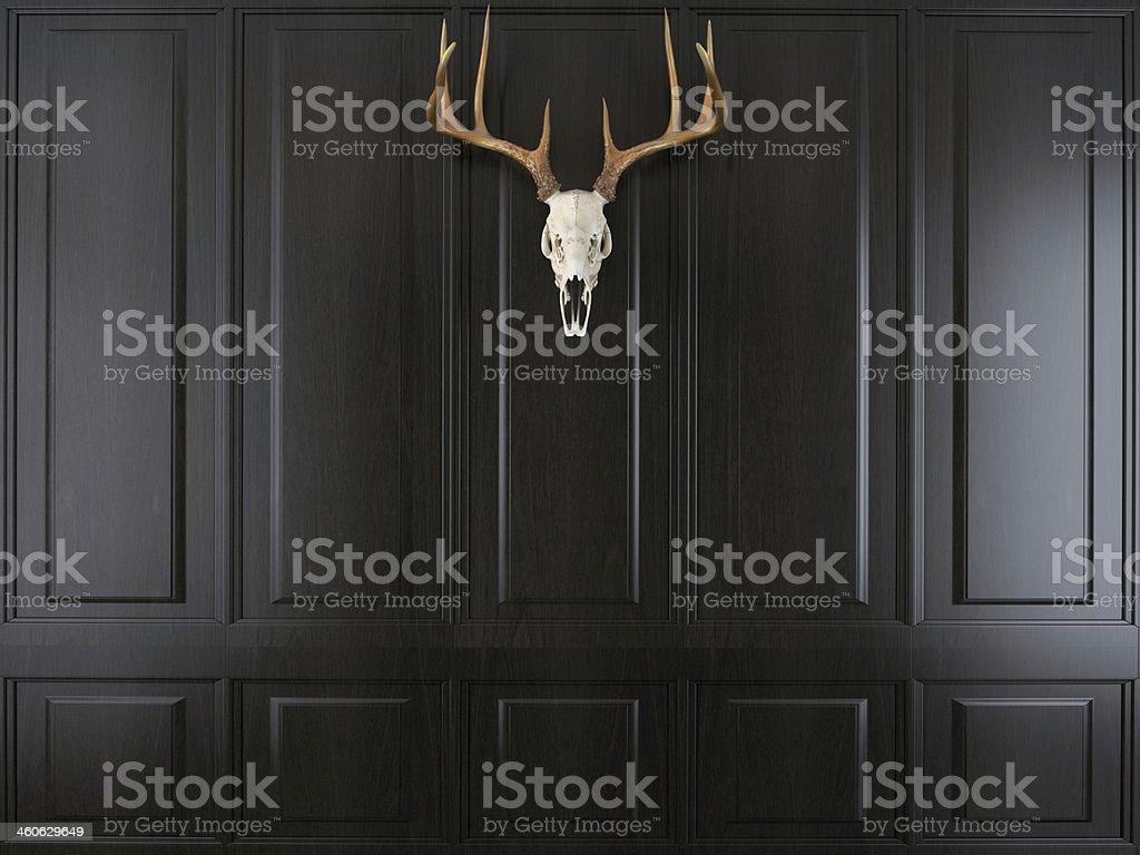 deer skull with horns stock photo