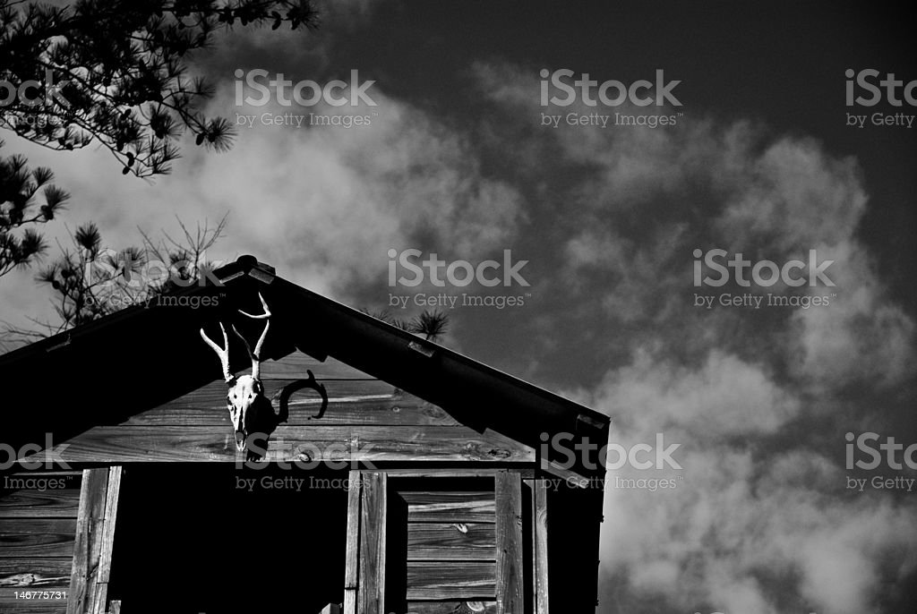 Deer Stand and Skull stock photo