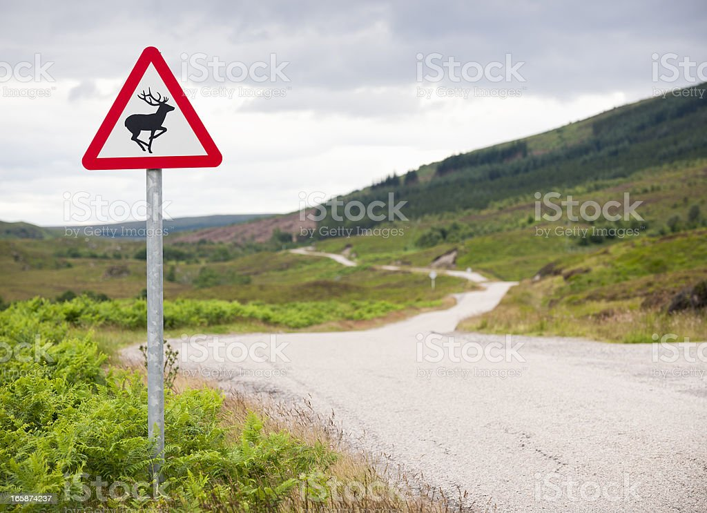 Deer Warning Sign on Country Road stock photo