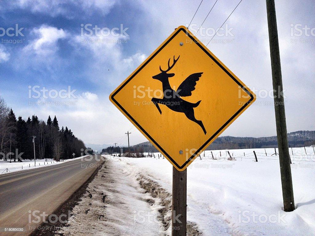 Hirsch mit Flügel – Foto