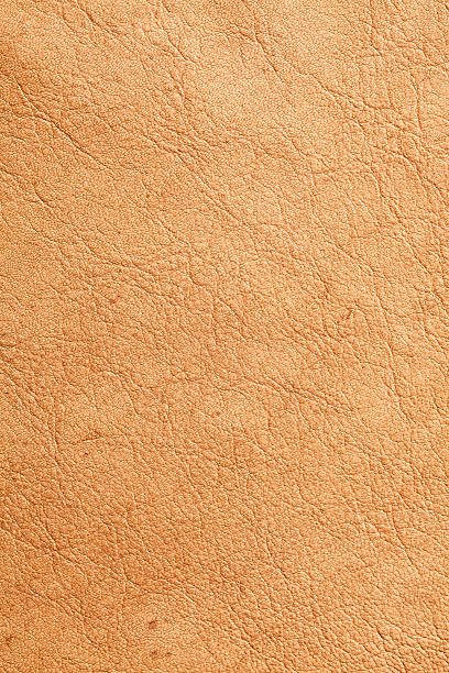 Deerskin Background stock photo