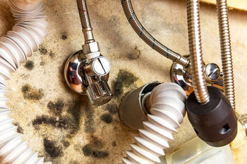 Defective water valve at the kitchen sink. Leaking water. Wet and moldy wall. Plumbing work.