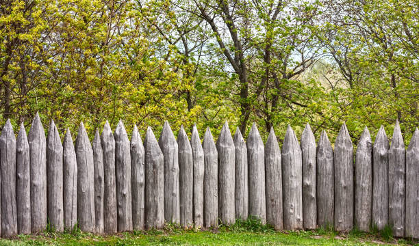 """defensive wooden palisade stockade from sharpened logs on the background of trees""""n - palisade boundary stock photos and pictures"""