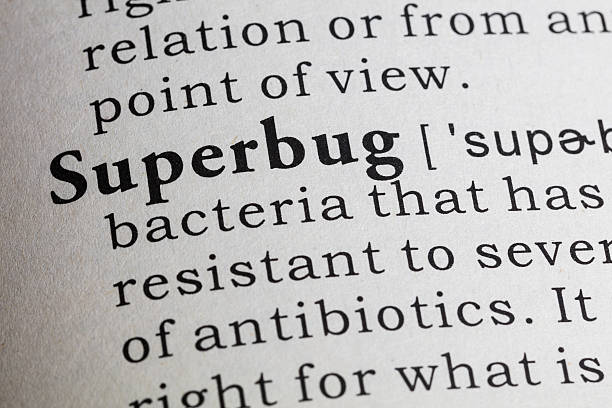 definition of superbug Fake Dictionary, Dictionary definition of the word superbug. antibiotic resistant stock pictures, royalty-free photos & images