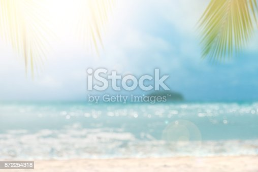 istock Defocus tropical sea and palm leaves on foreground 872254318