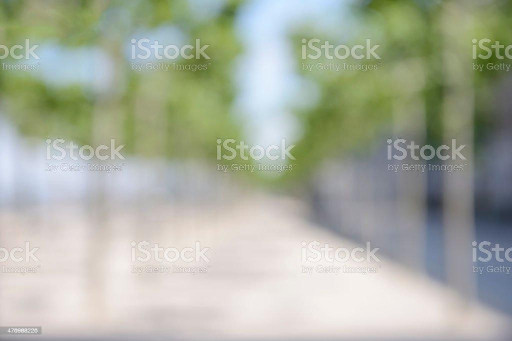 Unscharf gestellt avenue mit kleinen Bäume/blured Hintergrund – Foto