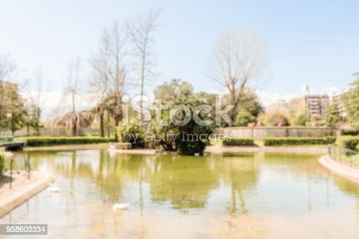 Defocused background of little lake with ducks in public park. Intentionally blurred post production for bokeh effect