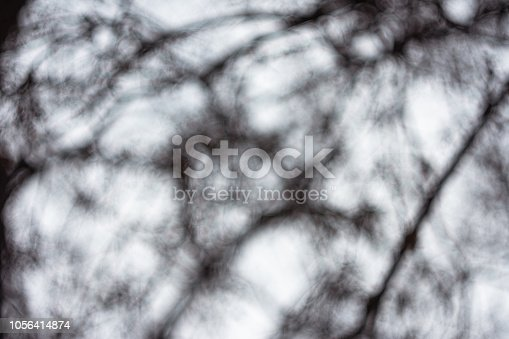 614958148 istock photo Defocused Background Of Trees Against Sky In Winter 1056414874