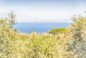 Defocused background with view of Sorrento coastline, Italy