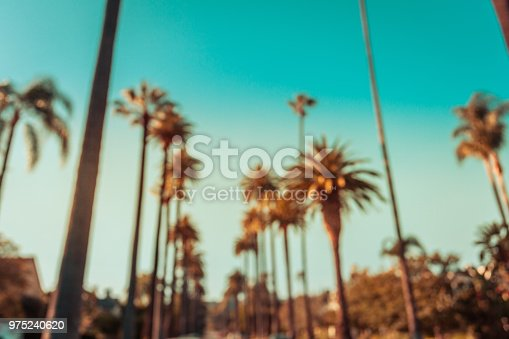 Intentionally defocused beverly hills palms in retro tone
