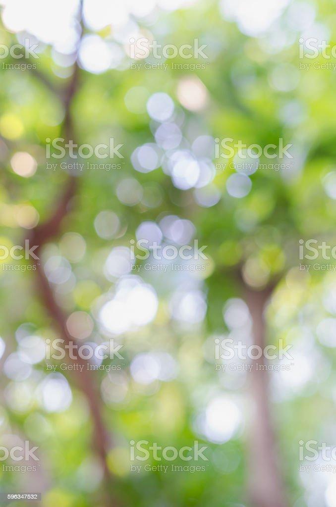 Bokeh Garten Hintergrund Unscharf gestellt Lizenzfreies stock-foto