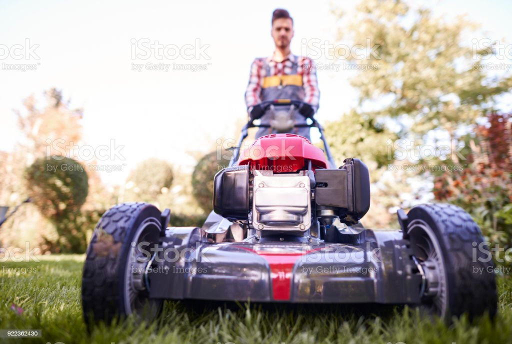 Defocused gardener pushing modern mower stock photo