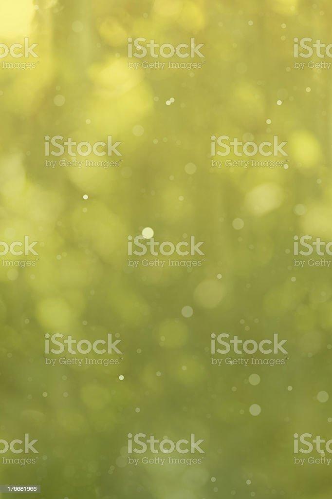 defocused green background royalty-free stock photo