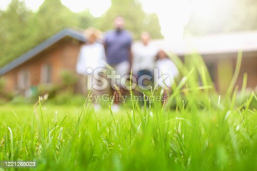 Defocused low angle view portrait of African-American family standing in a row at backyard lawn