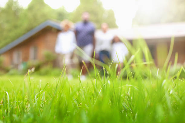 Defocused low angle view portrait of African-American family standing in a row at backyard lawn stock photo