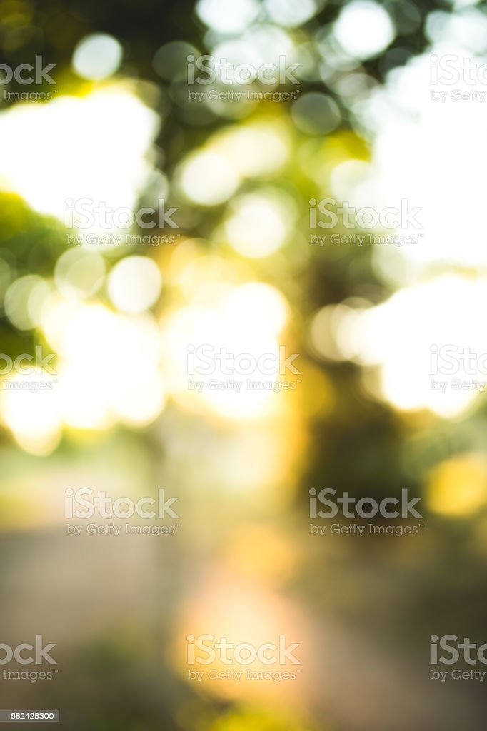 Defocused nature background royalty-free stock photo