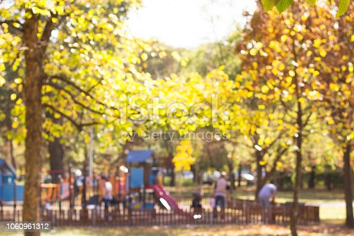 926151996istockphoto Defocused playground with children and parents in park 1060961312