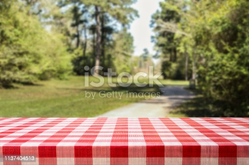 1048926386 istock photo Defocused summer park scene with blank picnic table. 1137404513