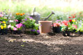 Defocussed Flower Garden Background