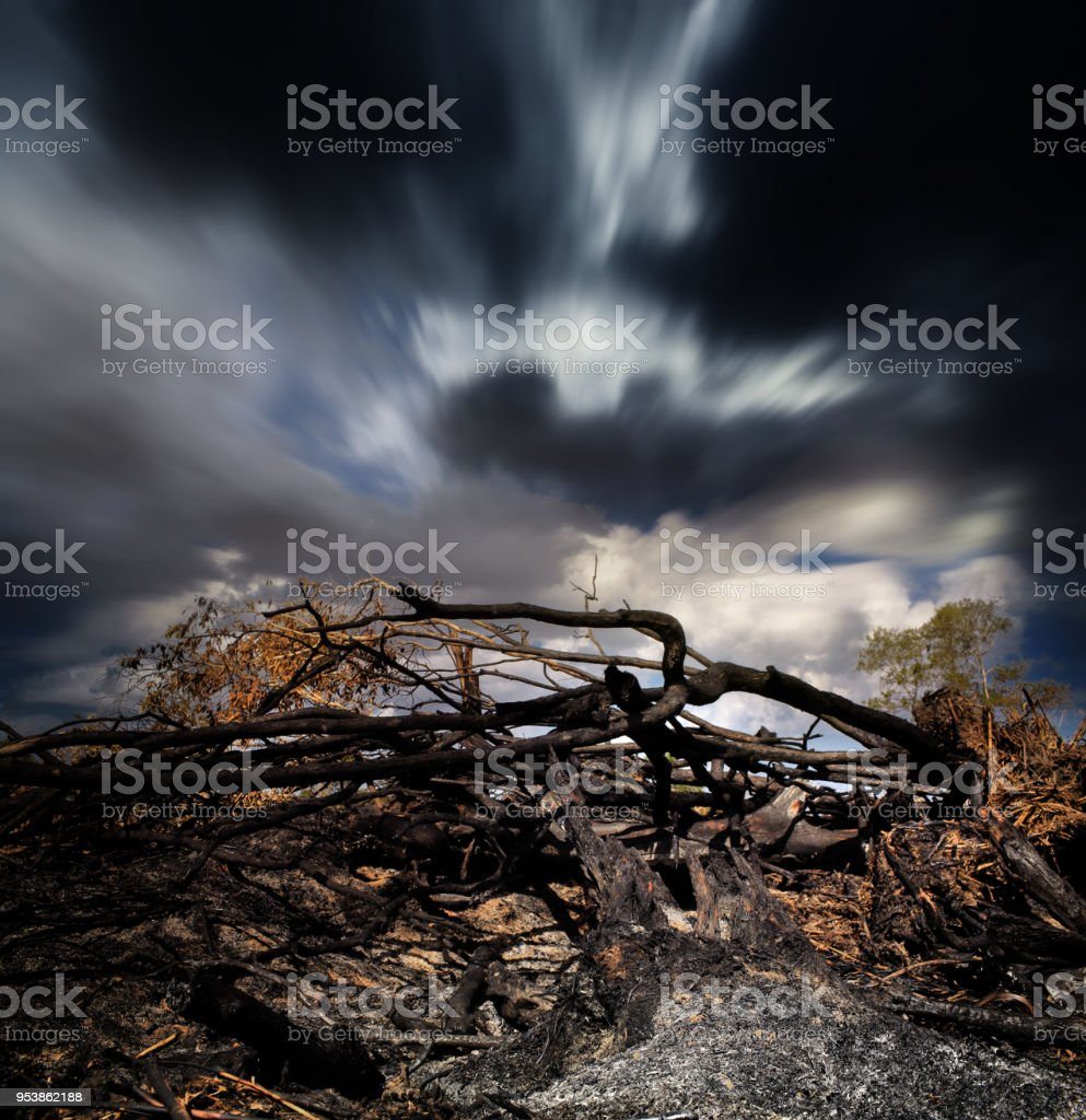 Deforestation in Southeast Asia. stock photo