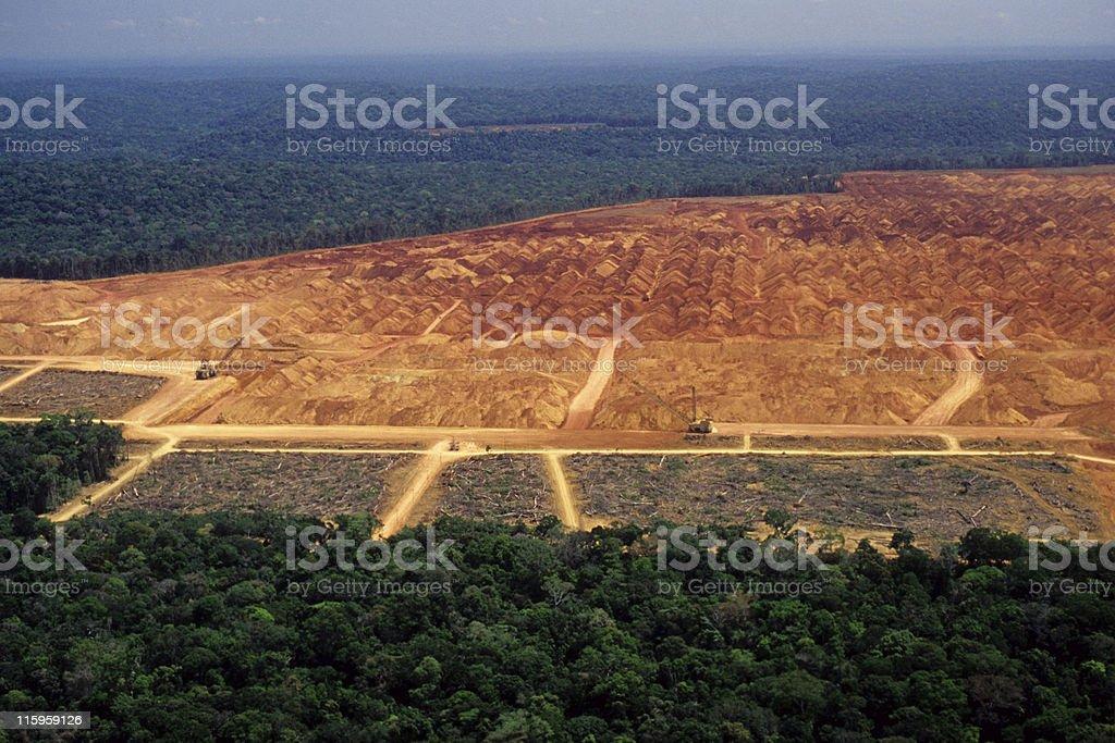Disboscamento in Amazon - foto stock