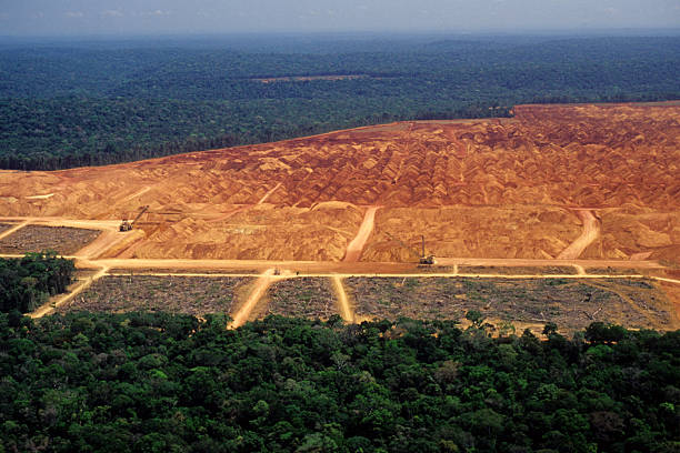 Deforestation in the Amazon An industry in the middle of the Amazon glade stock pictures, royalty-free photos & images