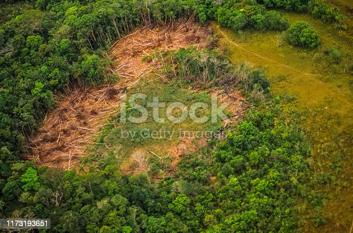 Aerial view of an area being deforestation