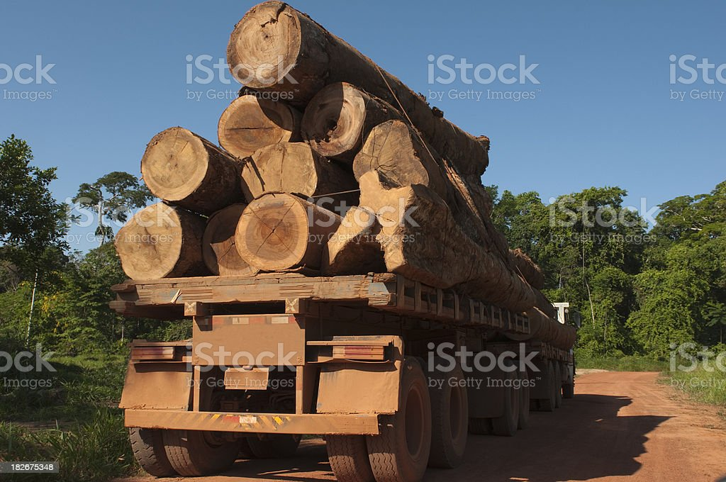 Deforestation in the amazon rainforest royalty-free stock photo