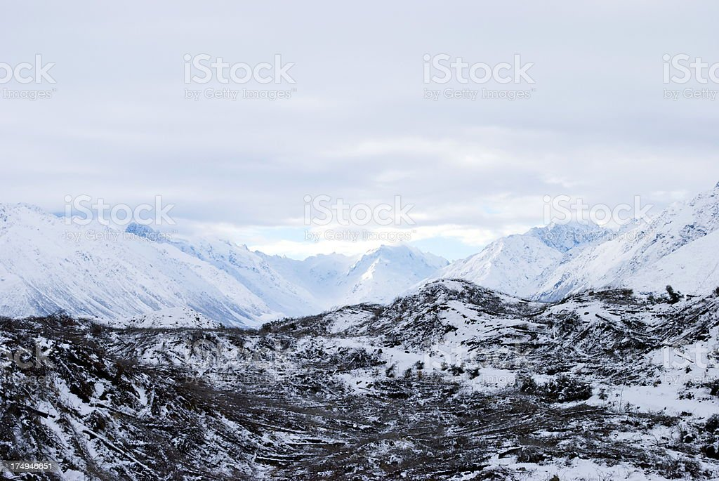 Deforestation & View to Mt Cook (Aoraki), New Zealand stock photo