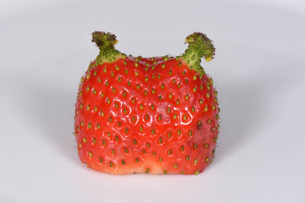deformed strawberry stock photo