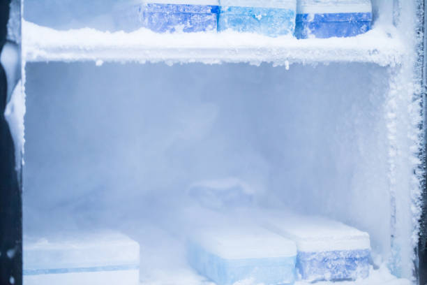 -80 degree frige in the lab stock photo