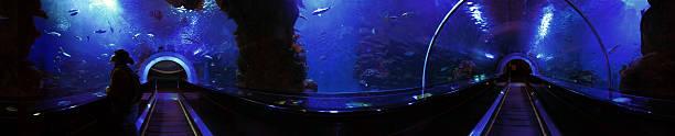 Panorama à 360 degrés Tunnel sous-marine - Photo