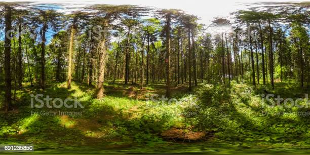 Degrees spherical panorama of european forest with blue sky in the picture id691235850?b=1&k=6&m=691235850&s=612x612&h=f9yz tgqjmyy922p3guql6wdvl9wllqxz0jqcrgrlt4=