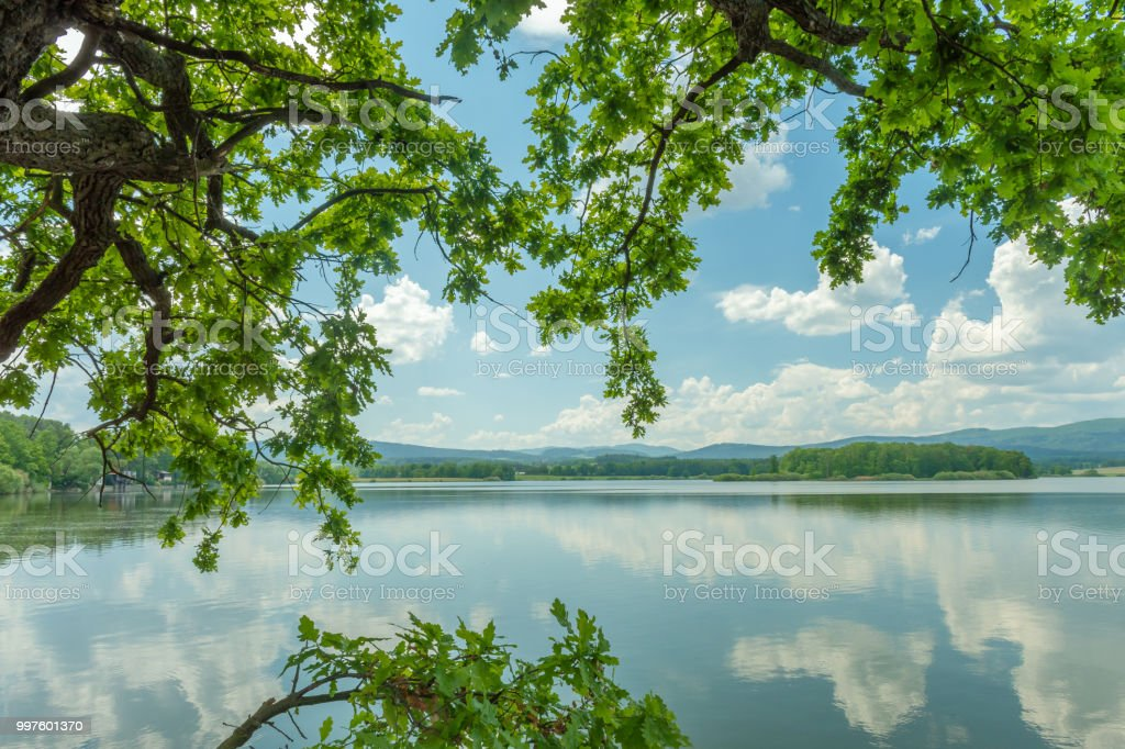 Dehtá fishpond in southern bohemia stock photo