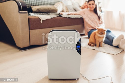 istock Dehumidifier with touch panel, humidity indicator, uv lamp, air ionizer, water container works at home. Dampness 1076906114