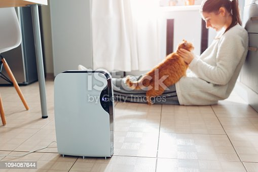 851700660 istock photo Dehumidifier with touch panel, humidity indicator, uv lamp, air ionizer, water container works at home. Air dryer 1094087644