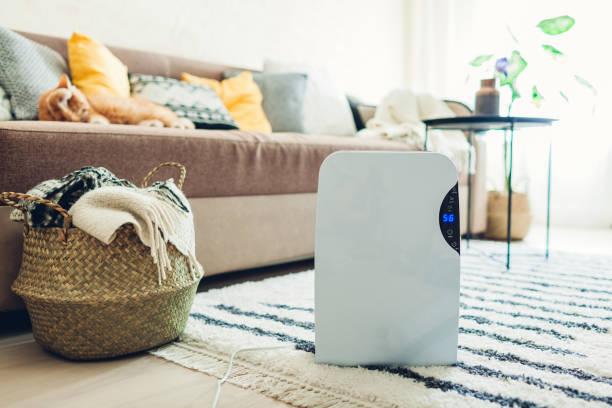 Dehumidifier with touch panel humidity indicator uv lamp air ionizer picture id1151153967?b=1&k=6&m=1151153967&s=612x612&w=0&h=2szhgq8xs72dqj5wv5fxocckblftppxt26yijeayqba=
