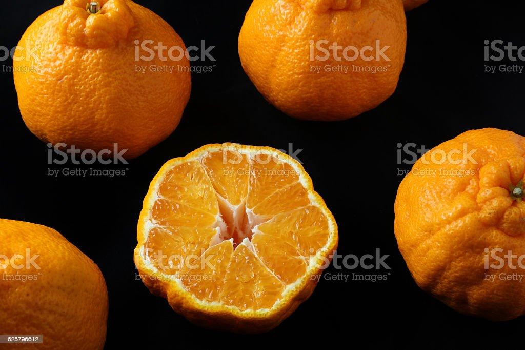 Dekopon citrus fruit, a hybrid between Kiyomi and ponkan stock photo