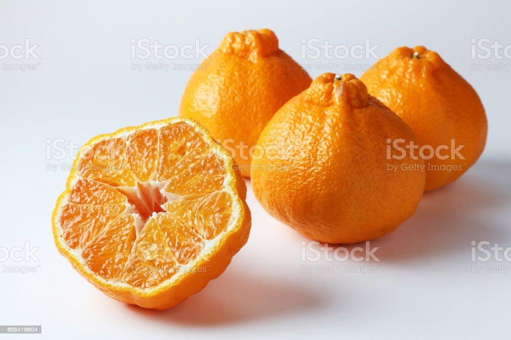 Dekopon Citrus Fruit Stock Photo - Download Image Now - iStock